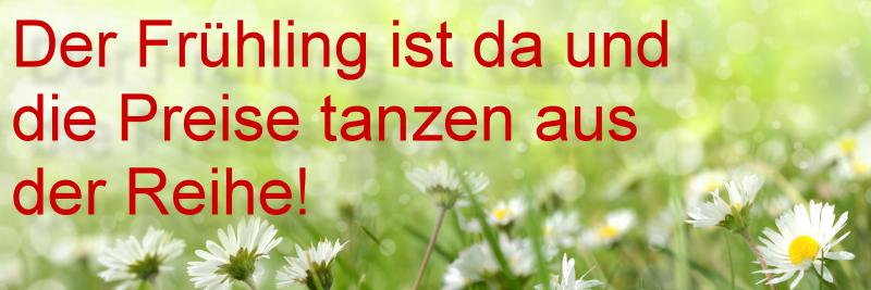 Frühlingsaktion bei Tür-und-Zarge.de